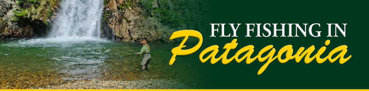Fly Fishing in Patagonia with the Blue Quill Angler
