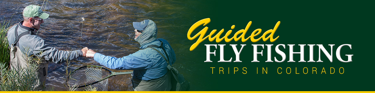 Colorado Guided Fly Fishing Trips with The Blue Quill Angler
