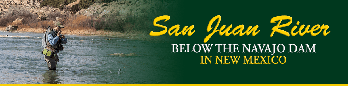 Guided Fly Fishing on the San Juan River in New Mexico with the Blue Quill Angler
