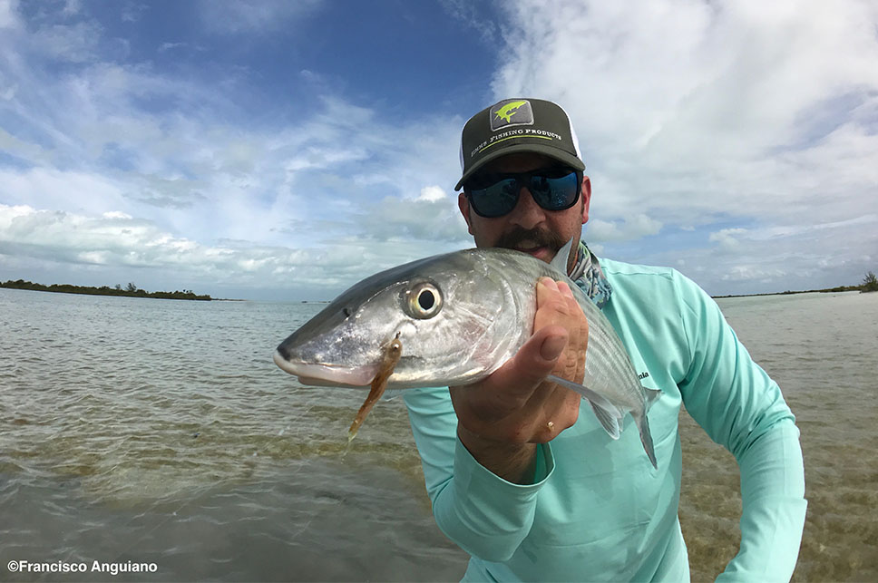 Nice Bonefish Catch - Palometa Club Destination Trip Fly Fishing with the Blue Quill Angler