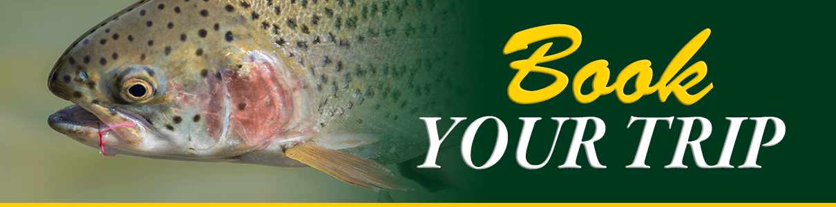 Clean Stream Angling Pledge